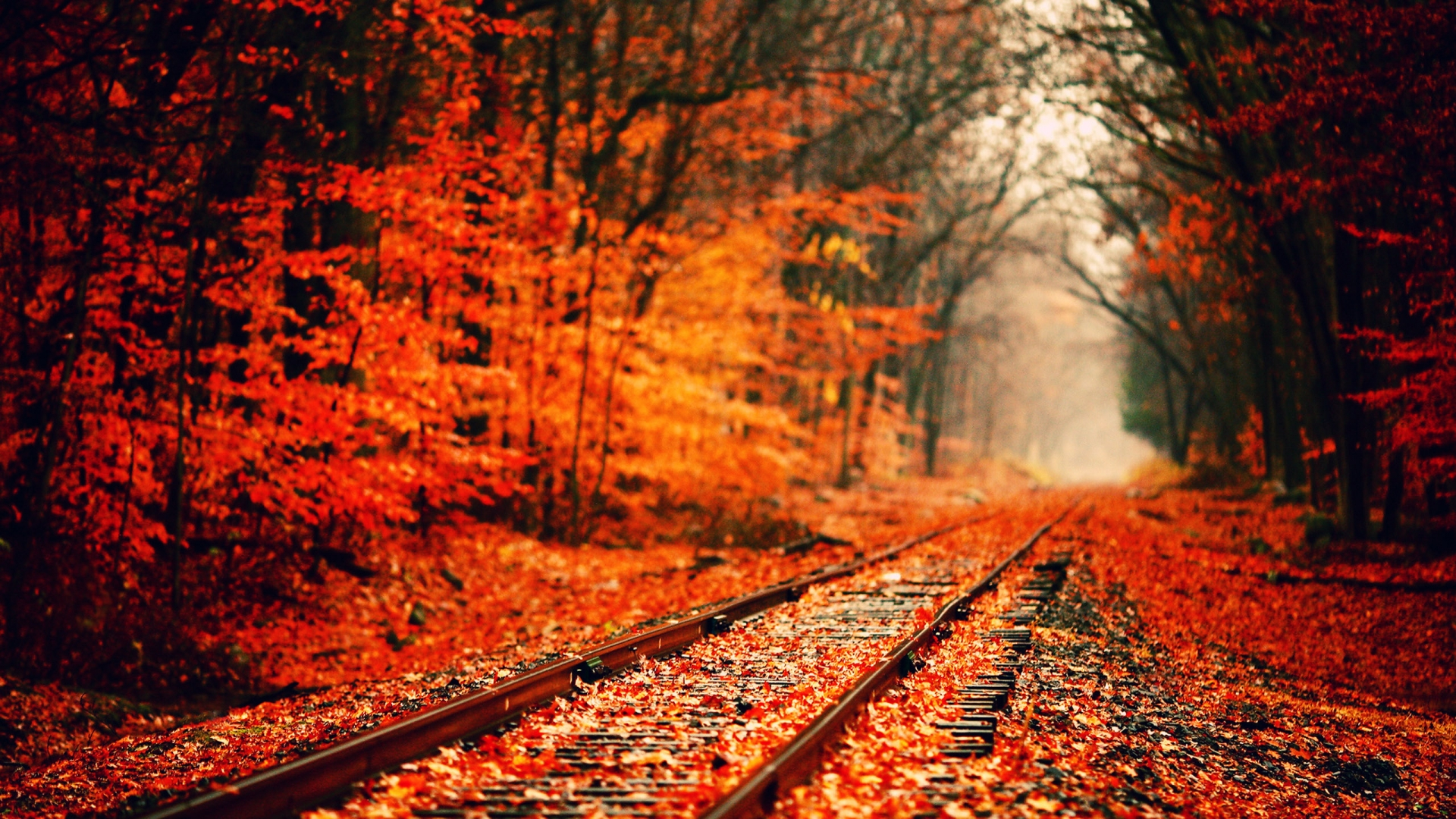 hd-fall-nature-wallpapers-3